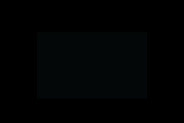 NYC & Co Logo